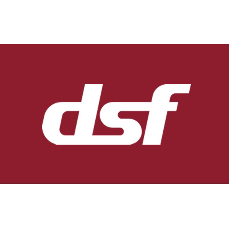 DSF Verein Depot und Schienenfahrzeuge Koblenz Logo